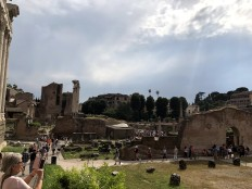 Inside of Roman Forum & Palatine Hill